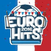 Euro 2016 Hits