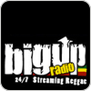"écouter ""Big Up Radio Dancehall"""