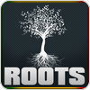 "écouter ""Big Up Radio Roots"""