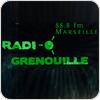 """écouter """"Radio Grenouille 88.8"""""""