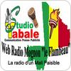 "écouter ""Radio Mognon Méry"""