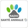 """écouter """"GOOM - Santé Animale"""""""