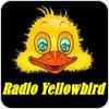 """écouter """"Radio Yellowbird"""""""