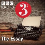 The Essay