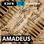 DR P2 - Amadeus