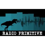 Radio Primitive