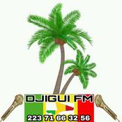Radio Djigui FM