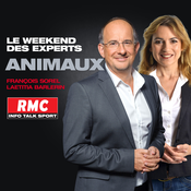 RMC - Le weekend des experts : Vos animaux