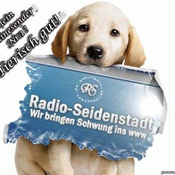 radio-seidenstadt
